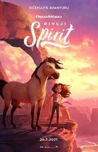 Divlji Spirit - sink